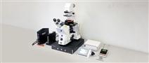 Flex-Bio生命科学用原子力显微镜