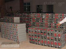 光宇蓄电池6-gfm-65报价