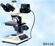 正置金相显微镜BX12A