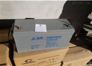 COSLIGHT/6-GFM-160C紧急电池专用蓄电池