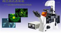 IBE2OOO倒置荧光显微镜