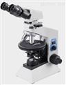 WMP-6105偏光显微镜