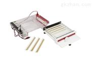 DYC-SUB3核酸水平电泳仪