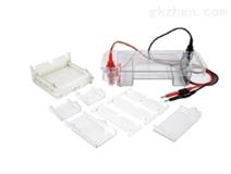 DYC-SUB2水平核酸电泳仪