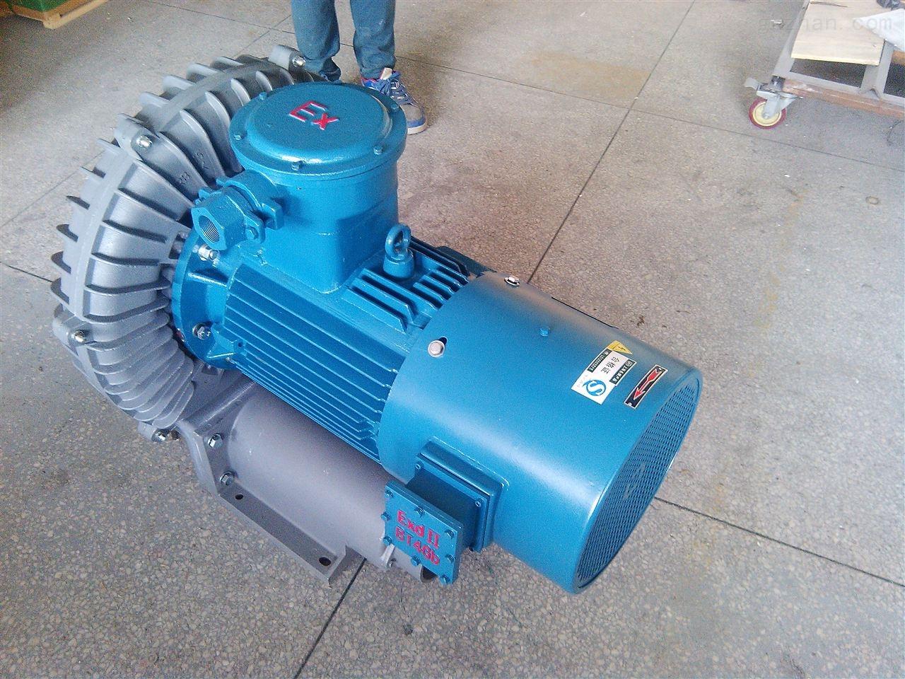 特殊防爆旋涡气泵生产厂家