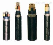 VVR22、VVP22铠装电力电缆