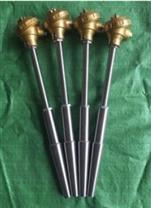 天仪牌带固定螺纹式锥度套管装配式热电偶