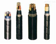 楚雄州ZR-VV22 ZR-VLV22电力电缆