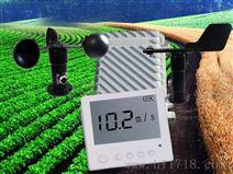 腾宇电子风速风向记录仪