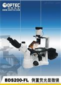 北京倒置荧光生物显微镜,东三省倒置荧光显微镜