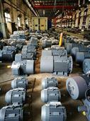 赛力盟YQ型号11kW~355kW交流电机厂家价格