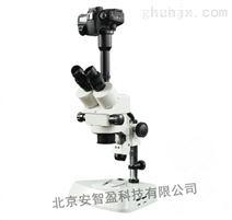 立体照相显微镜