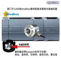 绝对值旋转编码器GMX60 R13/12E10 RMB