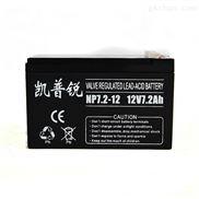 凯普锐12V12AH铅酸免维护蓄电池