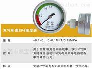 充气柜用60MMSF6气体密度表