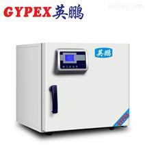 英鹏 实验室电热恒温干燥箱YPHX-70GPF