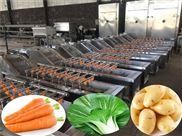 气浴清洗机-全自动净菜生产线-瓜果蔬菜加工流水线