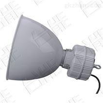 20wled防爆高效节能灯 led防爆灯