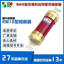 RM10 600A/500V 无填料封闭管 RM低压熔断器