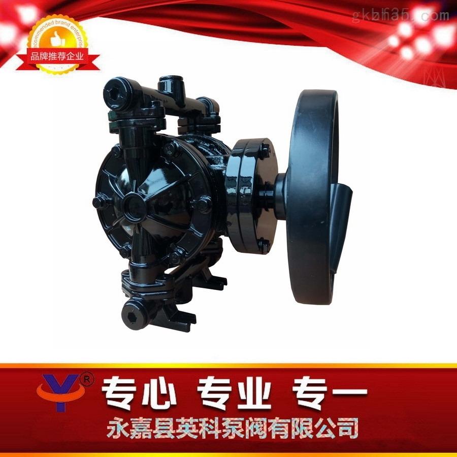 塑料手动隔膜泵浙江手动双隔膜泵铸铁手摇隔膜泵紧急消防手动泵
