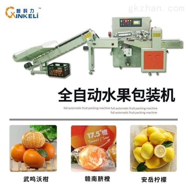 新科力赣南精品脐橙包装机团购活动开始啦