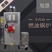 30kg-旭恩锅炉商用管道油污高温清洗蒸汽发生器