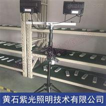輕便泛光燈型號YF2500