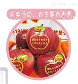 山西万荣县苹果印字机礼泉县简易苹果打字机