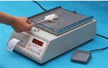 大小鼠抓力测定仪现货