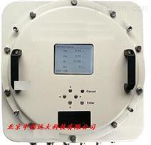 红外气体分析仪 型号:RY03-3500