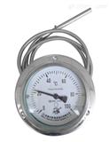 TKWTYXZ-201F  L=10000MM安徽天康电接点耐震型压力式温度计