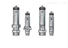 Niezgodka safety valve 22型 赫尔纳