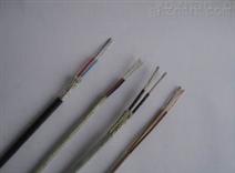 耐高温耐腐蚀S型热电偶补偿电缆