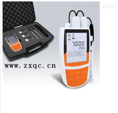 便携式多参数水质测量仪BT26-Bante900P-CN