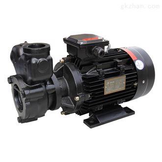 (高精密)高温漩涡泵价格
