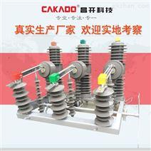 高压真空断路器20kv柱上分界开关带隔离刀闸