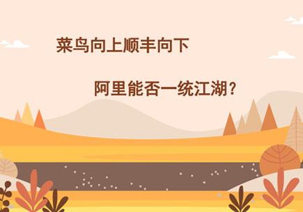 菜鸟向上顺丰向下 阿里能否一统江湖?