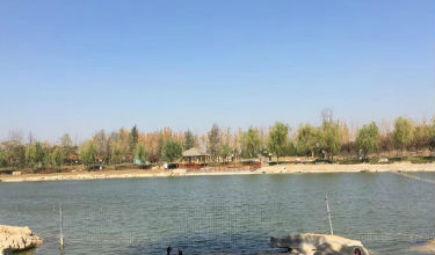 北京冬奥场馆清洁供电实现全面覆盖 鸟巢、水立方都有份